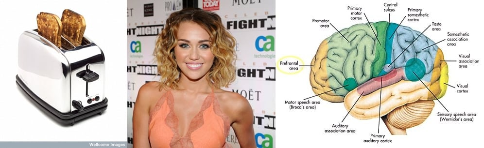 Toast, Miley Cyrus and the Rostromedial Prefrontal Cortex....